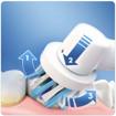 Oral-B Vitality 100 CrossAction Adulto Spazzolino rotante-oscillante Grigio, Bianco