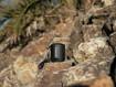 Sony SRS-XB13 - Speaker Bluetooth® portatile, resistente e potente con EXTRA BASS™, Nero