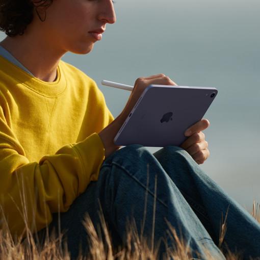 Apple iPad mini Wi-Fi 64GB - Rosa